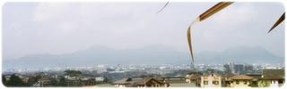 20110811-01.jpg
